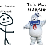 The Marshmallow Test: A Look At Delayed Gratification
